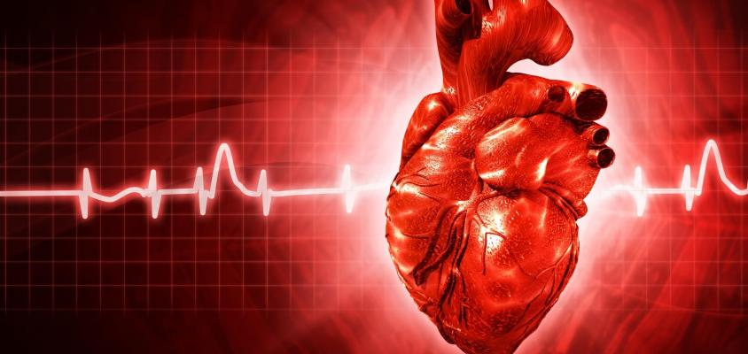 10 Types Of Heart Disease Symptoms Understanding Factors Causes And Statistics